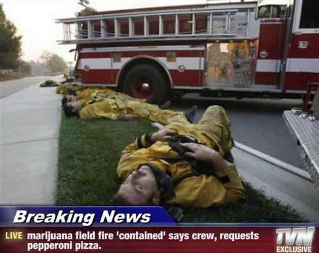 breaking news, marijuana field fire contained, firemen