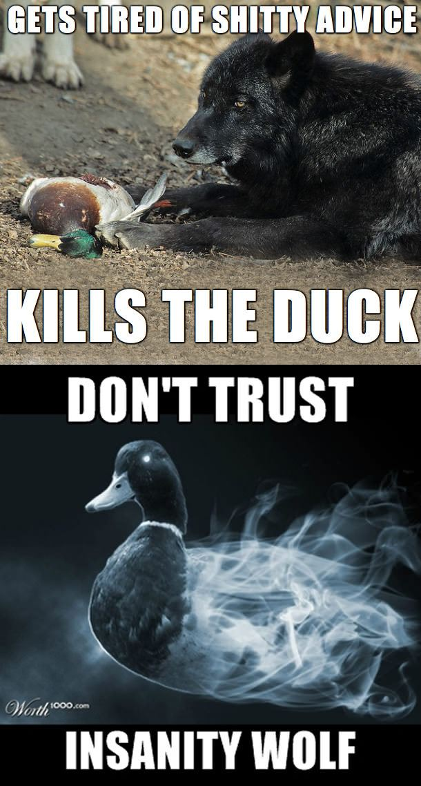 actual advice mallard, meme mashup, gets tired of shitty advice kills the duck, don't trust insanity wolf, meme