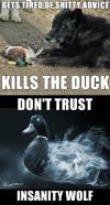 actual advice mallard, meme mashup, gets tired of shitty advice kills the duck, don't trust insanity wolf, meme