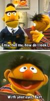 ernie and bert, how do i look?, with your eyes, lame joke, lol