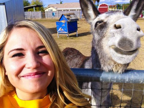 smiling donkey, girl