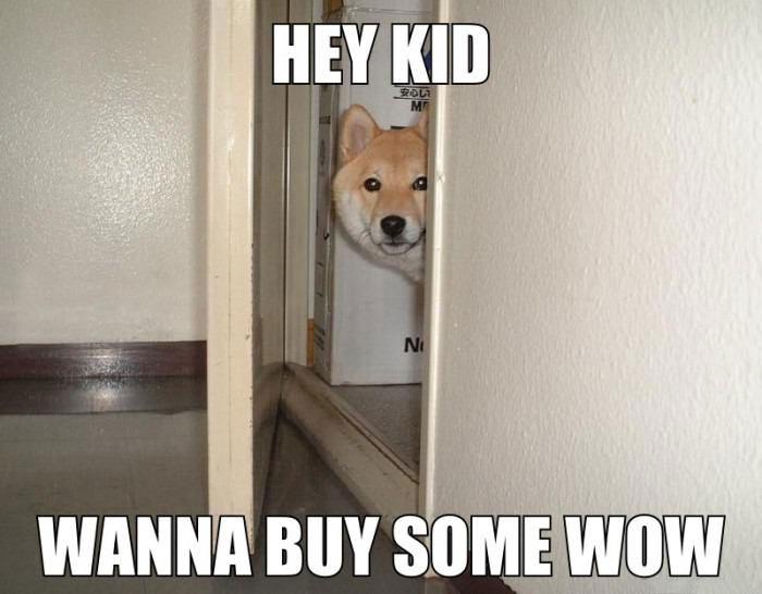 hustler doge meme, hey kid wanna buy some wow