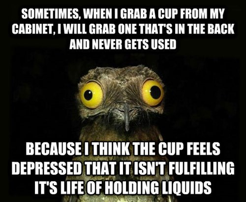 sometimes when i grab a cup from my cabinet, i will grab one that's in the back and never gets used because i think the cup feels depressed that it isn't fulfilling it's life of holding liquids