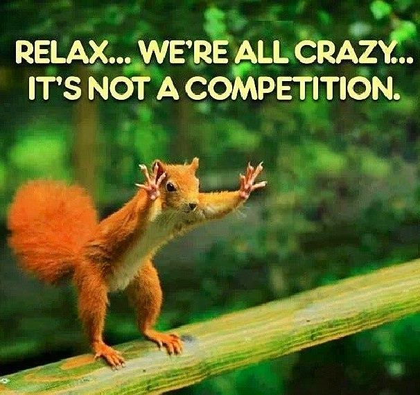 relax, we're all crazy, it's not a competition