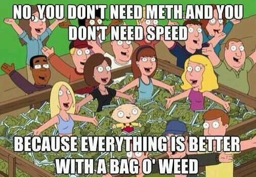 family guy, you don't need meth and you don't need speed, because everything is better with a bag of weed, meme