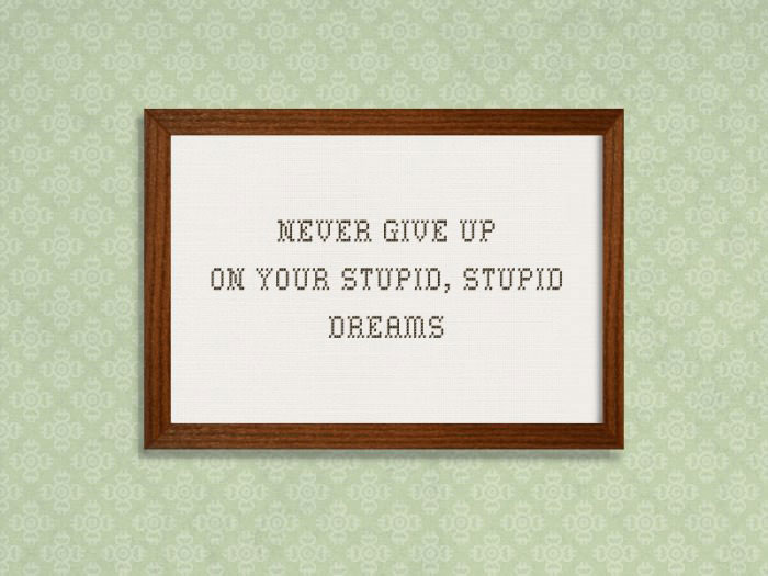never give up on your stupid, stupid dreams, framed quote