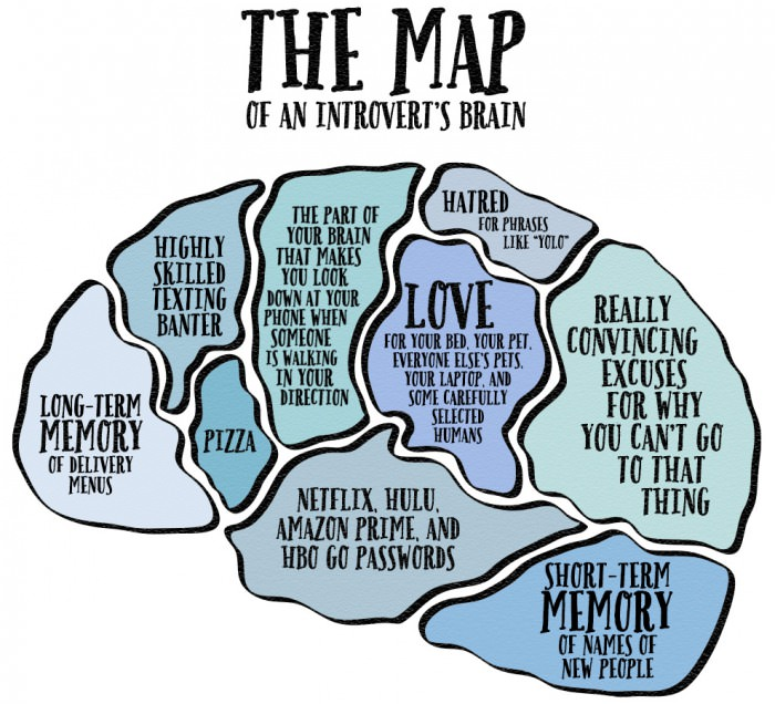 The Map Of An Introverts Brain  JustPost Virtually entertaining