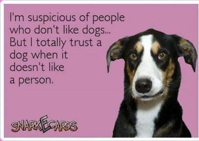 i'm suspicious of people who don't like dogs but i totally trust a dog when it doesn't like a person, ecard