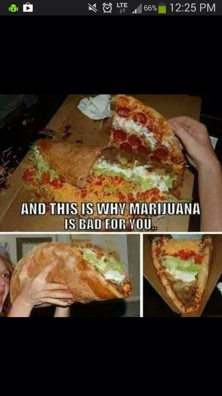 and this is why marihuana is bad for you