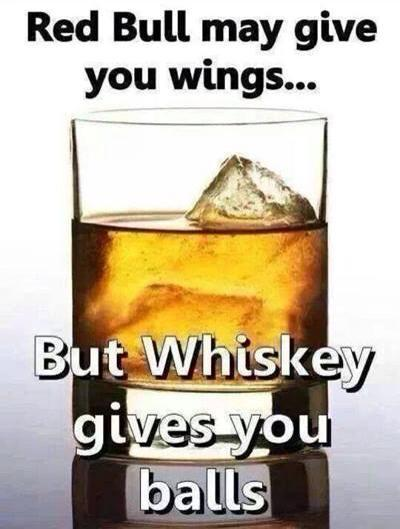 red bull may give you wings but whiskey gives you balls