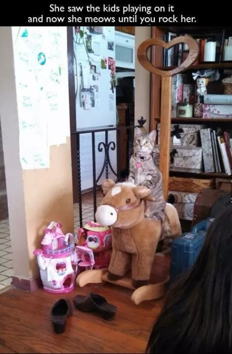 she saw the kids playing on it and now she meows until you rock her, smart cat
