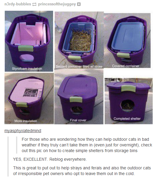 how to help animals stuck outdoors without having to let them in