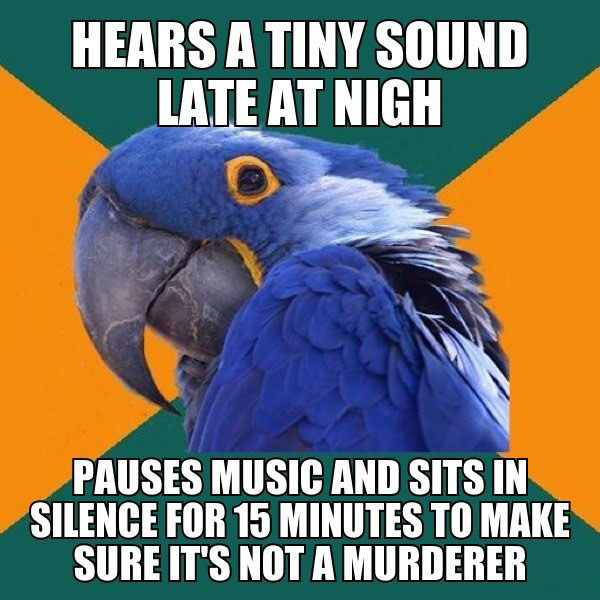 hears a tiny sound late at night, pauses music and sits in silence for 15 minutes to make sure it's not a murderer, meme