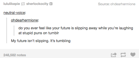 do you ever feel like your future is slipping away while you're laughing at stupid puns on the internet, tumblr