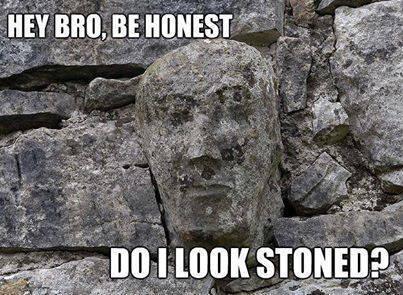 hey bro be honest do i look stoned?