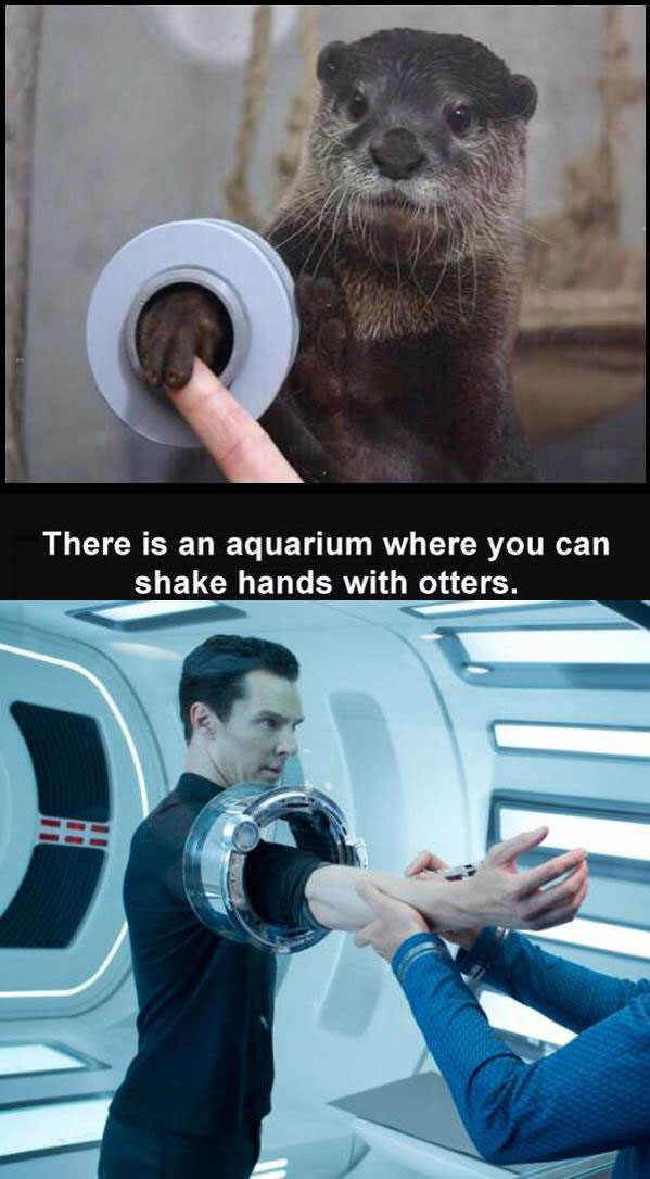 there is an aquarium where you can shake hands with otters, star trek villain
