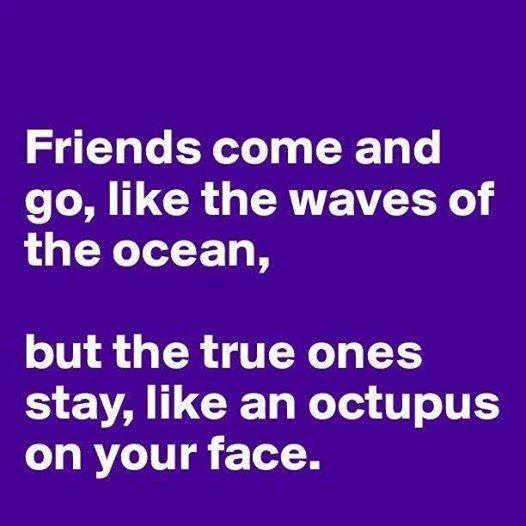 friends come and go like the waves of the ocean but true ones stay like an octopus on your face, wtf, lol