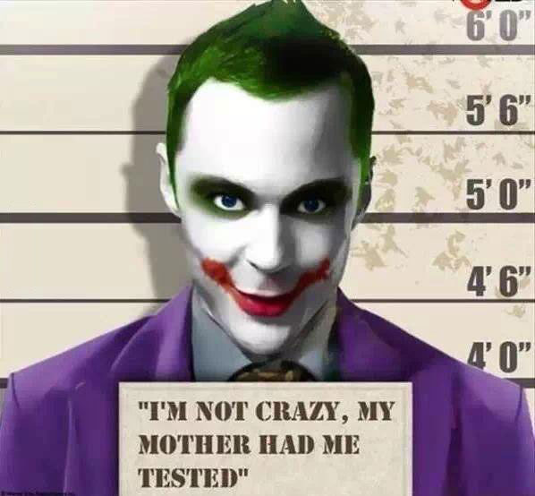 i'm not crazy my mother had me tested, sheldon cooper, the big bang theory