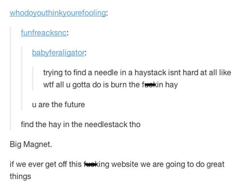 needle in a haystack solution