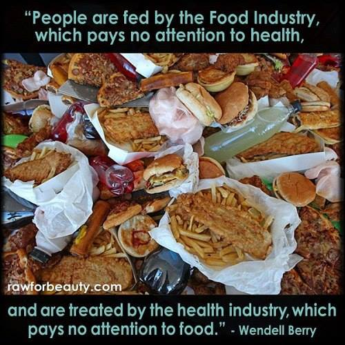 people are fed by the food industry which pays no attention to health and are treated by the health industry which pays no attention to food