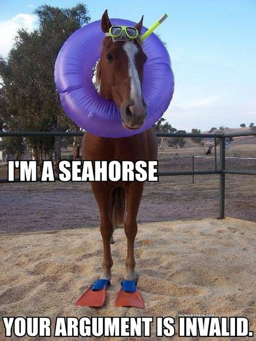i'm a seahorse, your argument is invalid, meme, lol, wtf