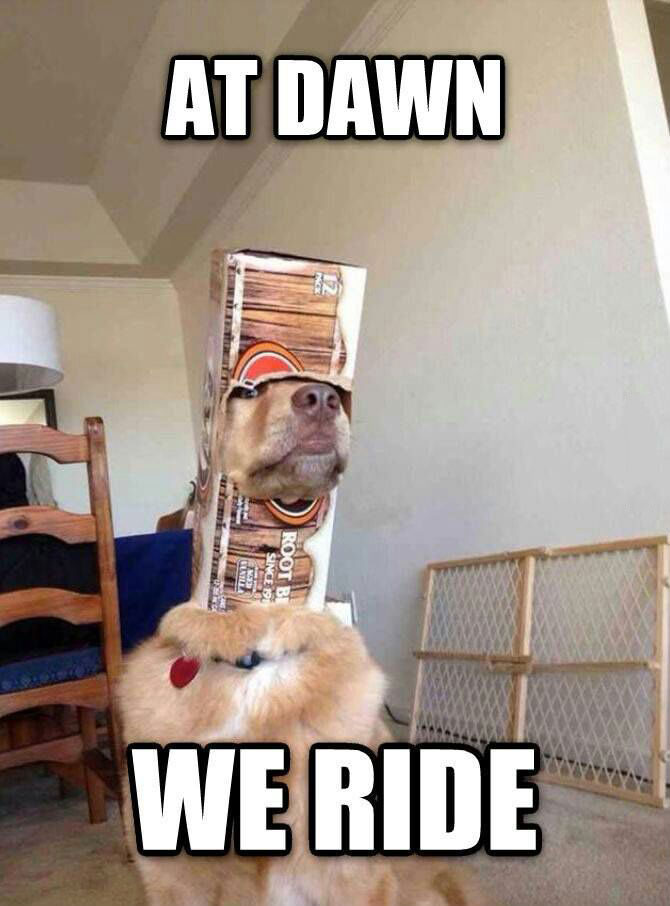at dawn we ride, dog with head in beer box, lol, meme