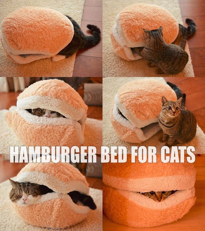 hamburger bed fur cats, product, win