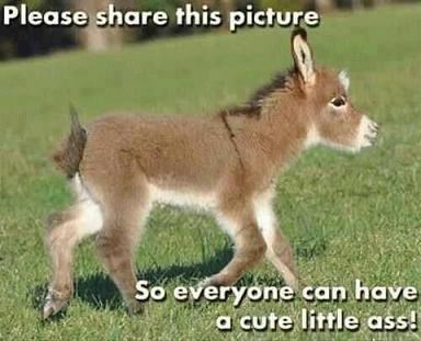 share this picture so that everyone can have a cute little ass