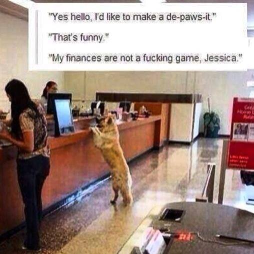 yes hello i'd like to make a deposit, that's funny, my finances are not a fucking game jessica, dog at bank, wtf, lol