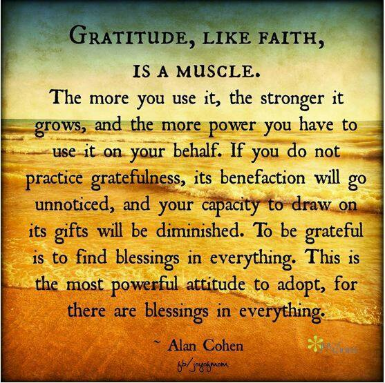 gratitude like faith is a muscle, the more you use it the stronger it grows and the more power you have to use it on your behalf, this is the most powerful attitude to adopt for there are blessings in everything, alan cohen, quote
