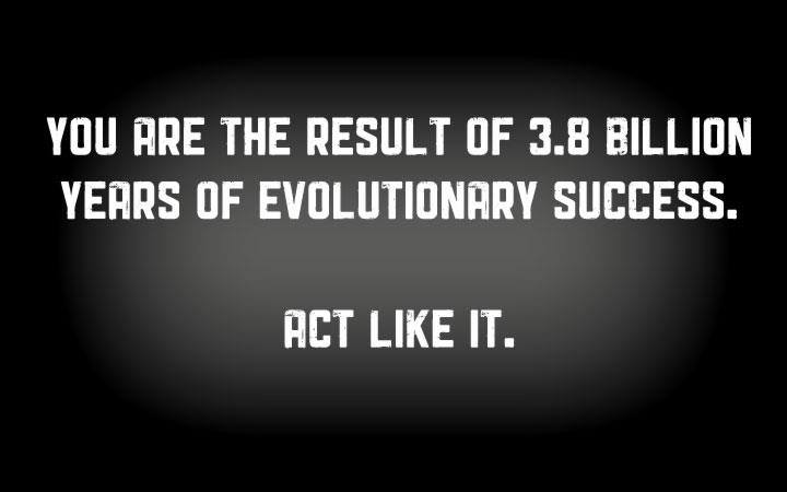 you are the result of 3.9 billion years of evolutionary success, act like it