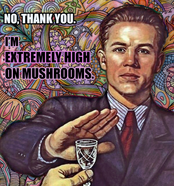 no thank you i am extremely high on mushrooms