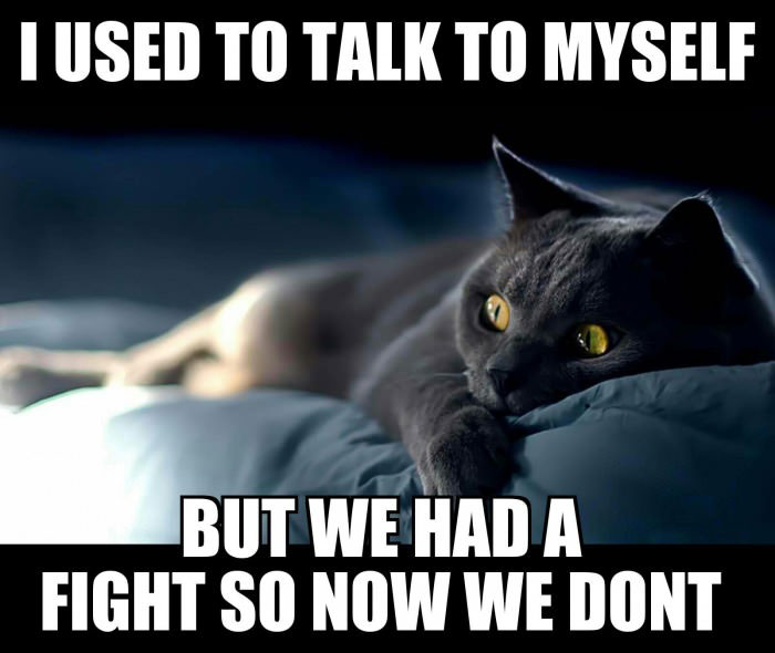 i used to talk to myself but we had a fight so now we don't, meme