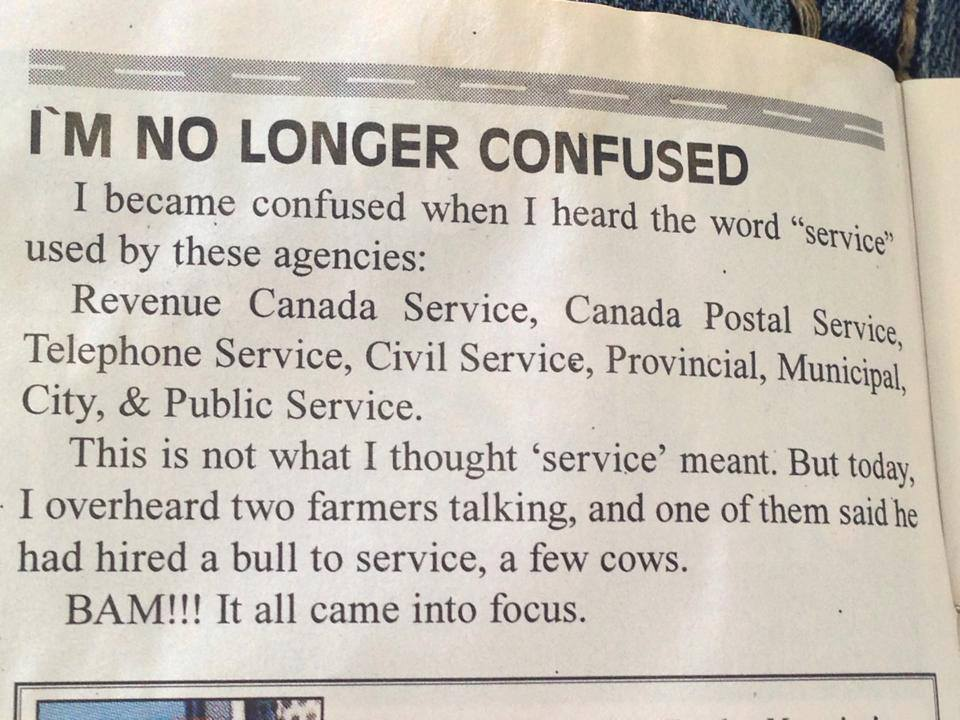 i am no longer confused, i overheard two farmers talking and one of them said he hired a bull to service a few cows
