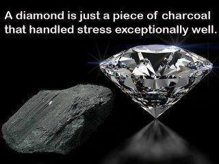 a diamond is just a piece of charcoal that handled stress exceptionally well