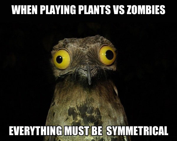 when playing plants vs zombies everything must be symmetrical, weird thing i do potoo, meme