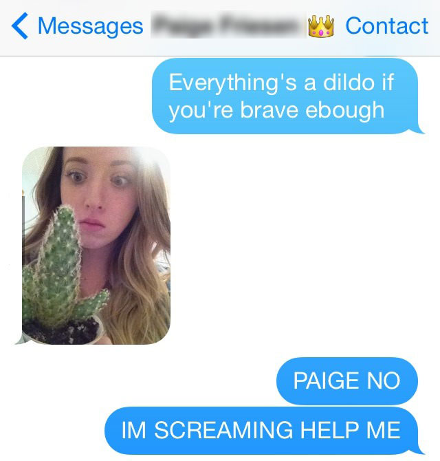 everything is a dildo if you are brave enough, paige no im screaming help me, cactus
