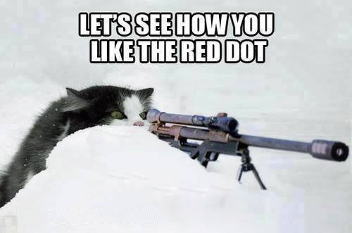 let's see how you like the red dot, cat with sniper rifle, meme