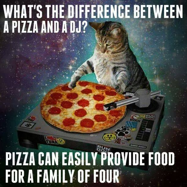 what is the difference between a pizza and a dj?, pizza can easily provide food for a family of four, cat mixing a pizza on a turntable, meme, joke
