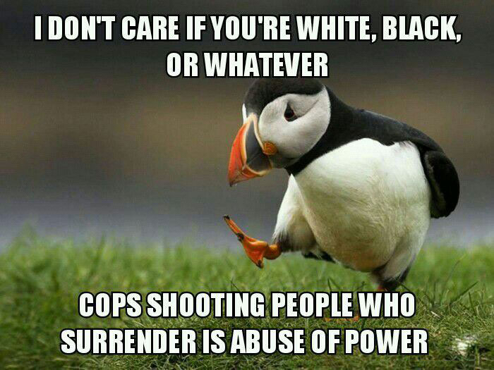 i don't care if you are white or black, cops shooting people who surrender is abuse of power, unpopular opinion puffin, meme