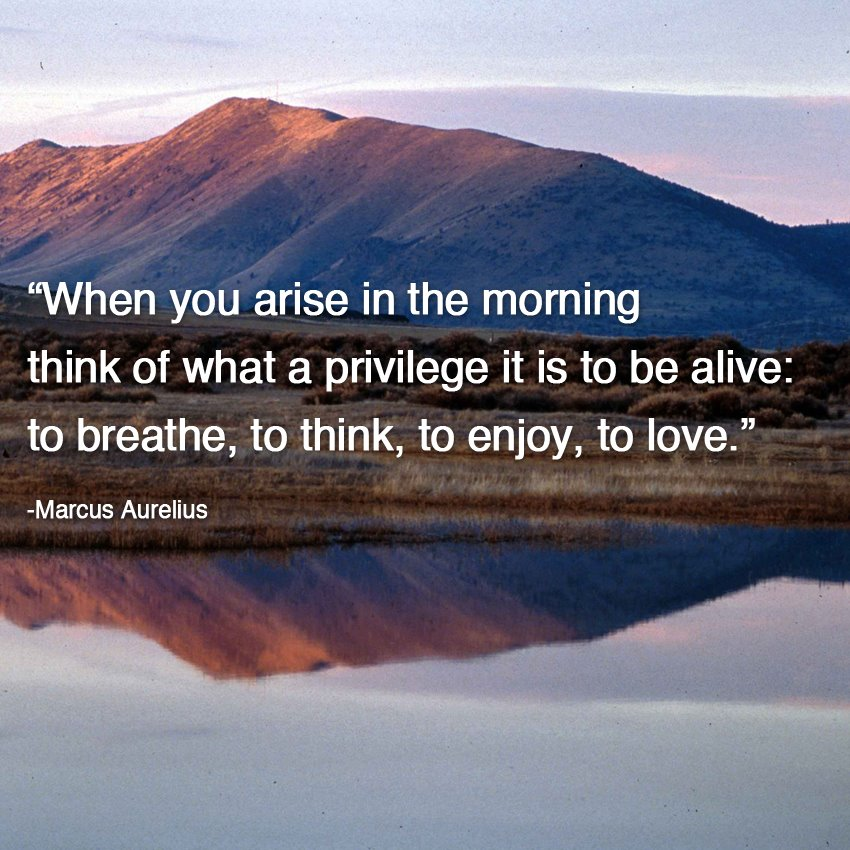 when you arise in the morning think of what a privilege it is to be alive, to breathe to think to enjoy to love, marcus aurelus, life, inspirational quote