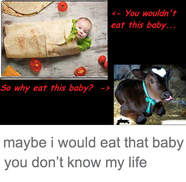 you would not eat this baby so why eat this baby?, maybe i would eat that baby you do not know my life