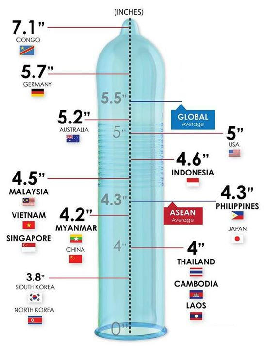 these are the average penis sizes around the world
