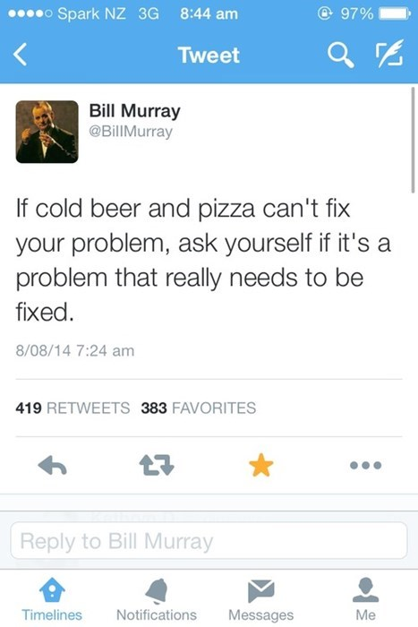 if cold beer and pizza can't fix your problem, ask yourself if it's a problem that really needs to be fixed, bill murray