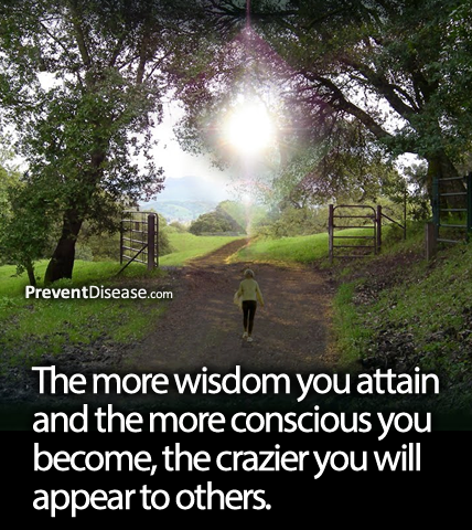the more wisdom you attain and the more conscious you become, the crazier you will appear to others