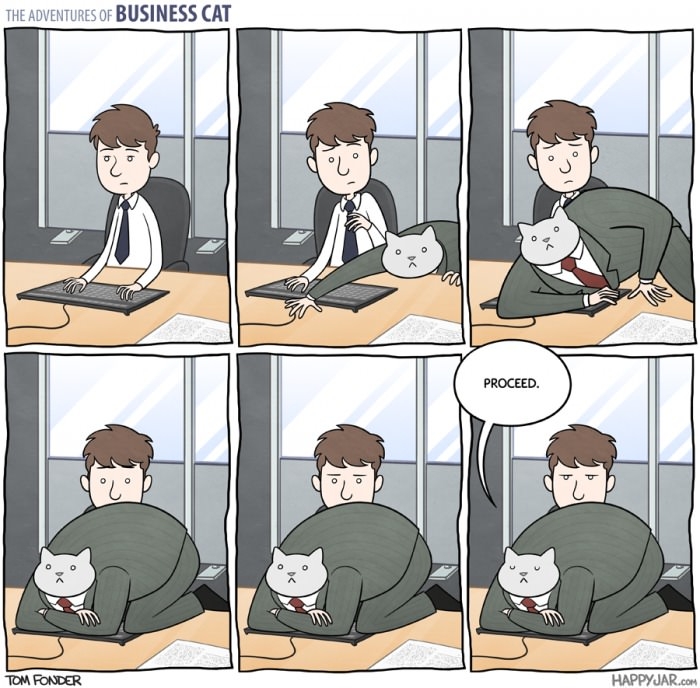 the adventures of business cat, proceed, comic
