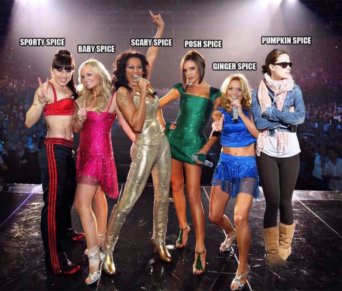 the new spice girls, pumpkin spice, sporty spice, baby spice, scary spice, posh spice, ginger spice
