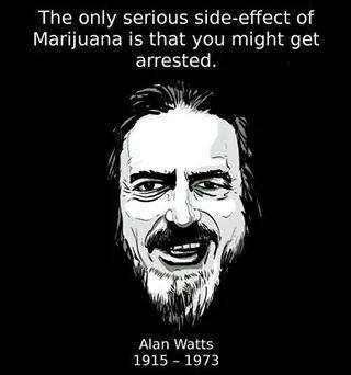 the only serious side effect of marijuana is that you might get arrested, alan watts