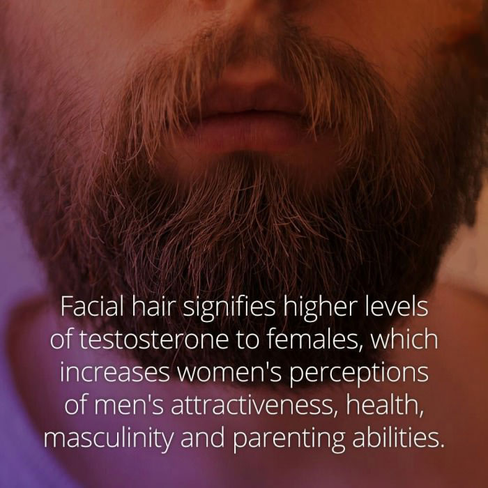 facial hair signifies higher levels of testosterone to females, which increases women's perceptions of men's attractiveness, health, masculinity and parenting abilities