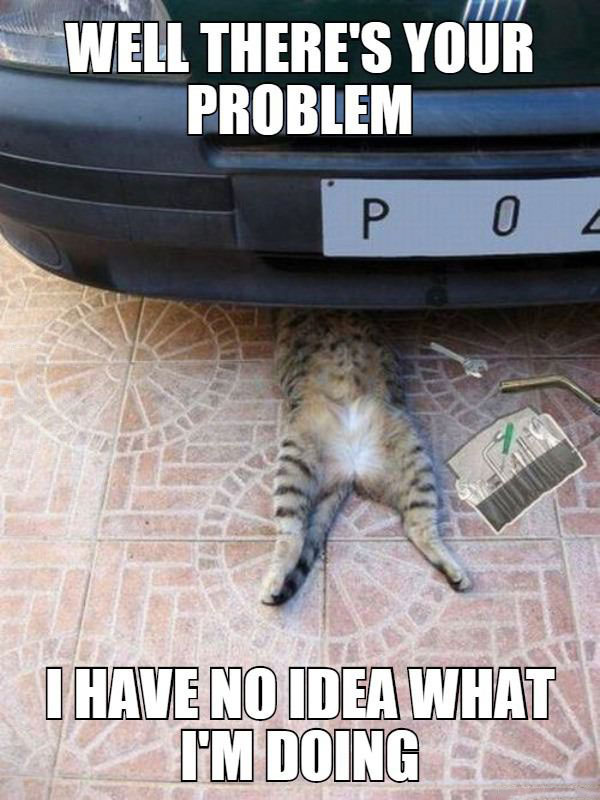 well there's your problem, i have no idea what i'm doing, meme, cat under car as if he was repairing it